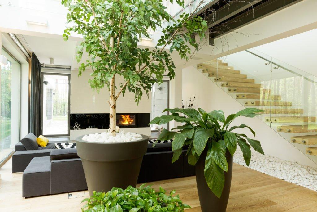 Interior Styling Services Designer Furniture Australia