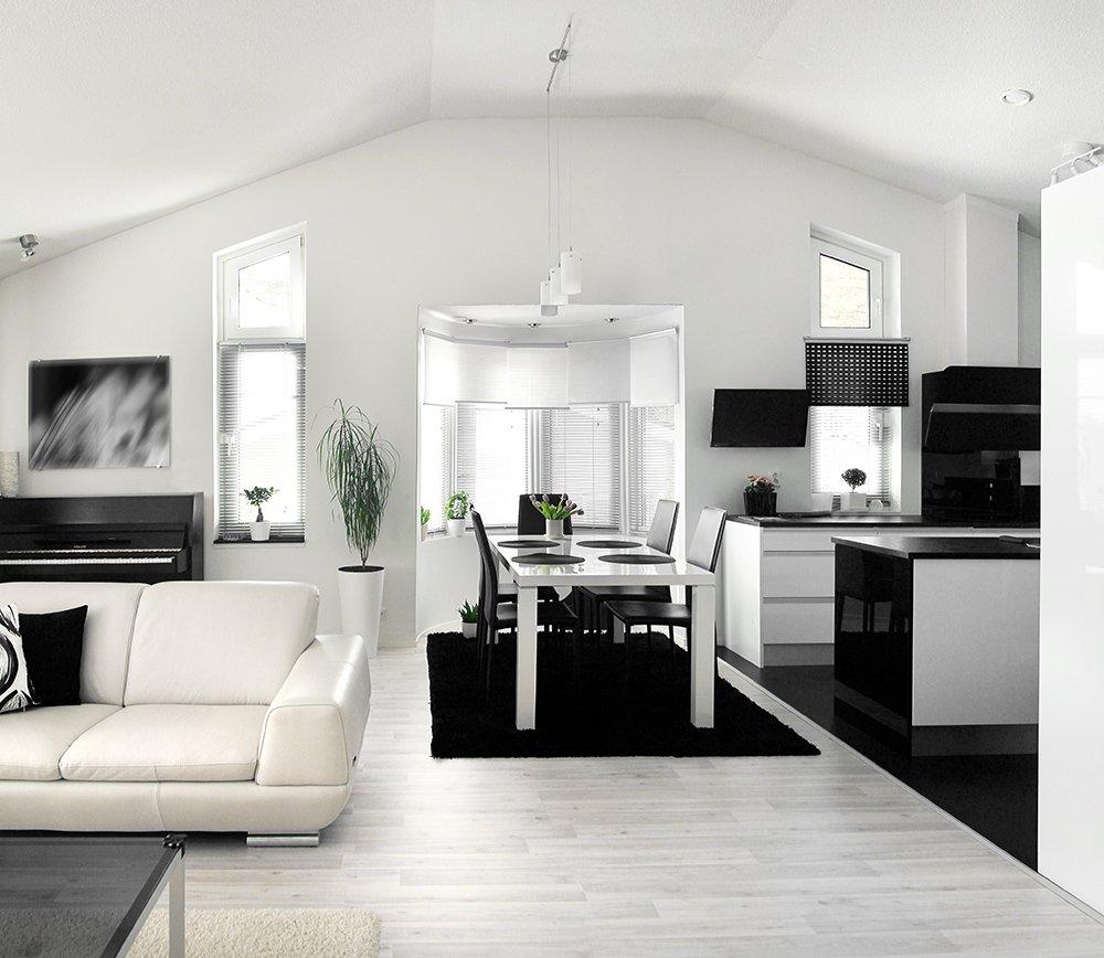 Simply White Living Room Ideas: B&W Living Rooms